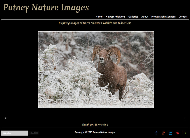 Putney Nature Images