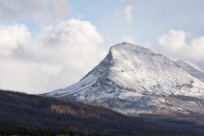Fired Damage - Glacier National Park