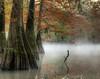 Fog at Mayes Lake