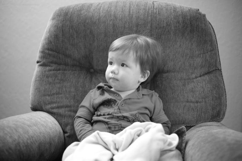 Hal ponders