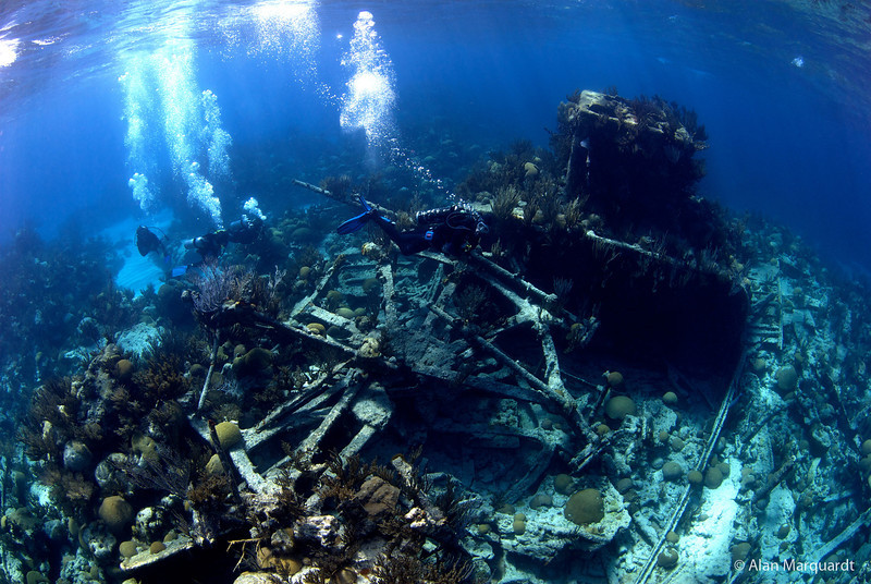 Dive down to a ship wreck