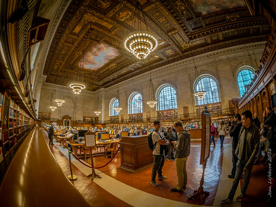 The Amazing New York City Library!