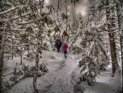 Christmas_Timmins_(1057_of_1153)_141225_HDR