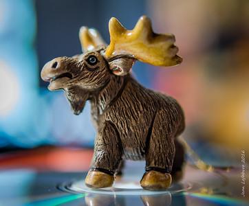 Ornamental Moose!