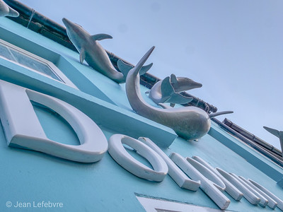 Dolphin store in Dingle