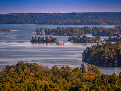 The View from Hill Island's Observation Tower
