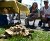 Bob Raines--Montgomery Media<br /> Raija Suomela and Diance Sharkey photograph a turtle brought by Briar Bush Nature Center, one of the exhibitors at the Ambler EAC Earth Fest, whose deformed shell is the result of the original owner feeding it dog kibble  Saturday, April 18, 2015.