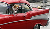 Sadie watches the bystanders at the Ambler Holiday Parade from the window of Monte Tambourino's 1957 Chevrolet BelAir leading the Ambler Junior Baseball group Saturday, Dec. 6, 2014.<br /> Bob Raines-Montgomery Media