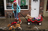 Erin Endicott starts for home after the Ambler Holiday Parade with her daughter, Astrid, and two beagles Lewis and Pearl.