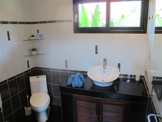 Lower Level shared Bathroom