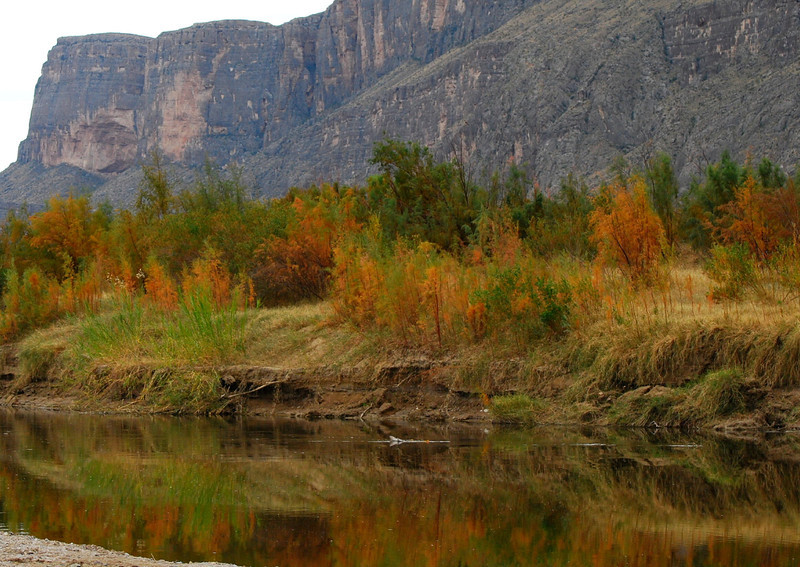 Rio Grande fall colors