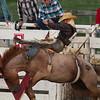Ride 'um Cowboy!