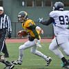 Fitchburg State Quarterback Garrett Dellechiaie runs through the Westfield defense in the 28-14 loss on Saturday afternoon. SENTINEL & ENTERPRISE / Ashley Green