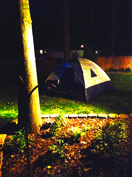 Camp out in the backyard