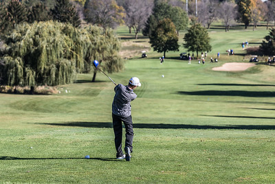 Golf_RC_Sectional_2017