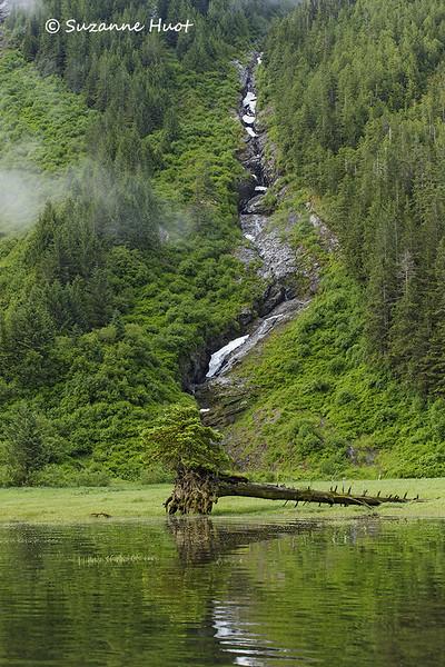 Khutzemateen  vally view