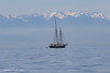 View of the Olympic mountains  with tall ship