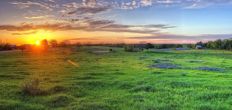 Sunset on the bluebonnet prairie