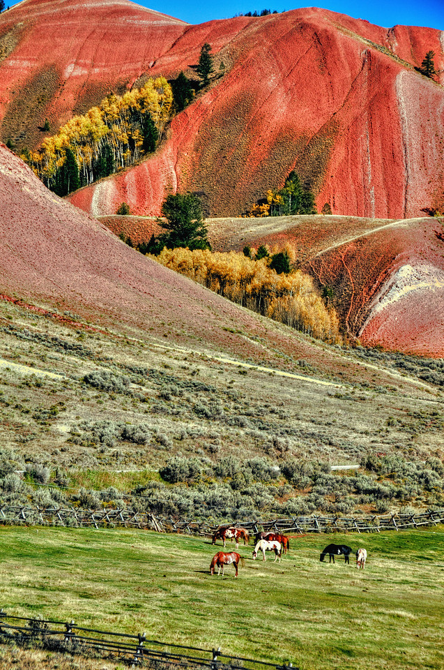 The Red Hills