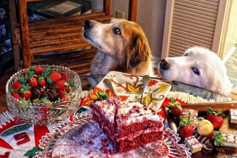I would take a bite