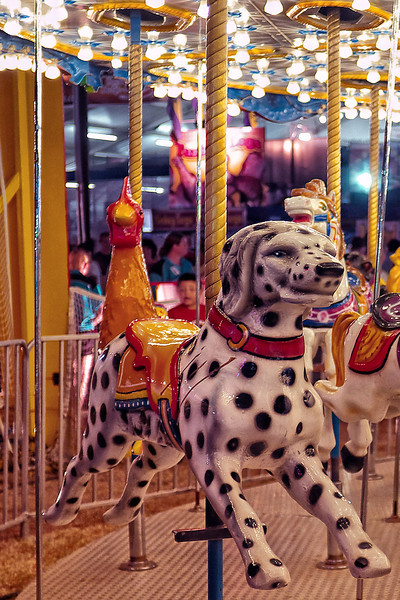 Awesome dalmation on the merry-go-round