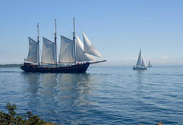 """Sail On""      18.5 x 12.75   $       Photograph"