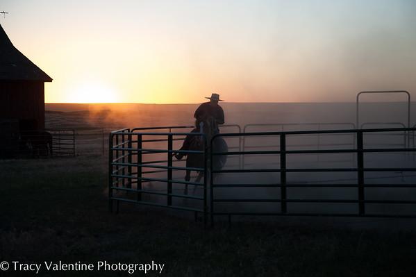 MD Ranch