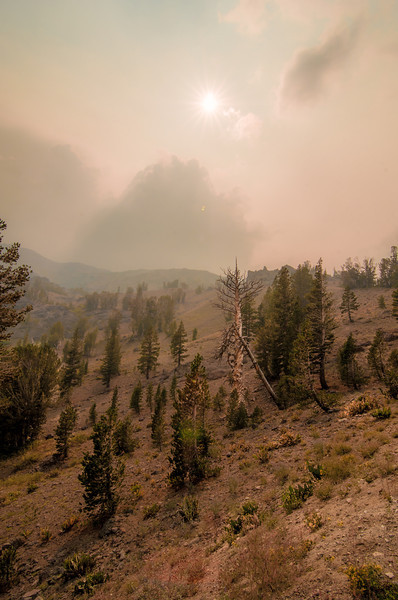 The Rim Fire is Coming
