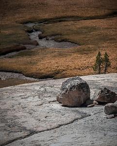 Meadow Meets Granite