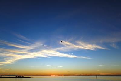 Libre dans le ciel