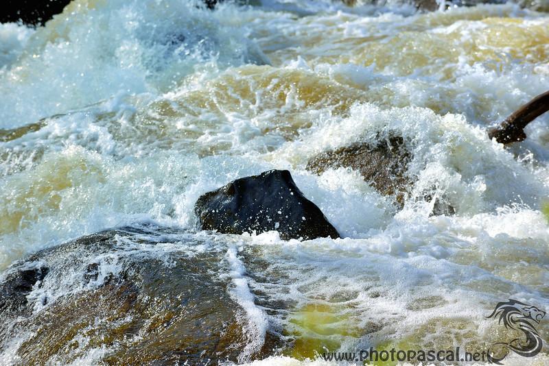 Tumulte de rivière Laurentienne
