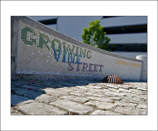 Growing Vine Street