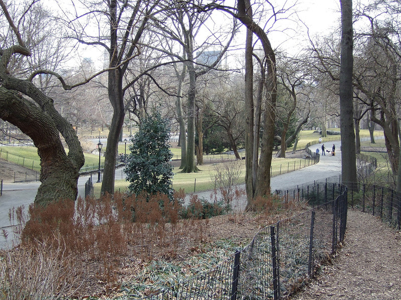 Central Park-fd0001