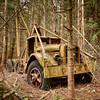 Trash Hauler Truck In Forest