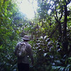 Luke Brog - Jungle Walk