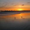 Chris Wilson - Coronado Island Sunset