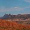 Lynn McCarty - Wild Nevada