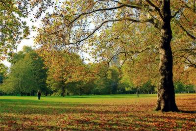 Bliss-Kissing in Green Park