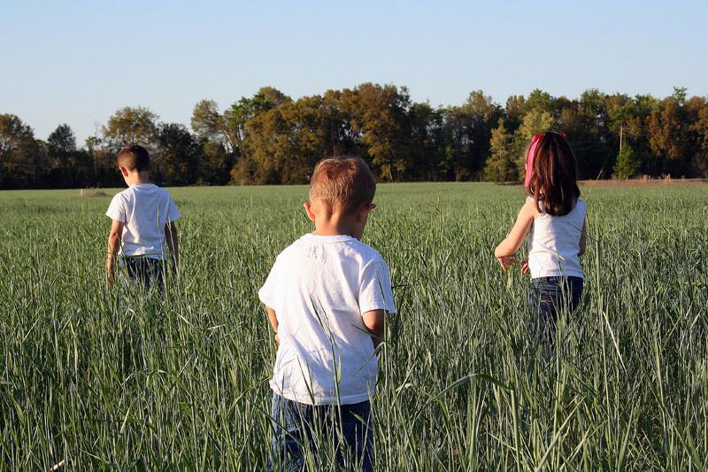 Children in the Rye