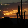 james comstock - Arizona Sunset