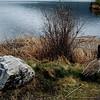 saskia partridge - canada