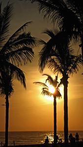 Janet Clements - Sunset on Beach in Mazatlan