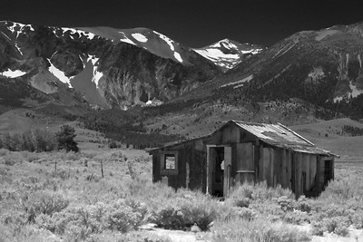 Homestead in Black and White