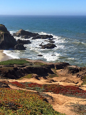 Bodega Bay, California