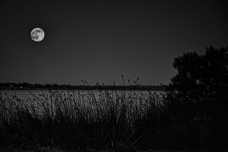 Buck Moon over White Rock Lake
