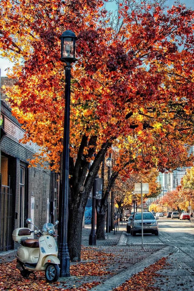 Deep Ellum Autumn