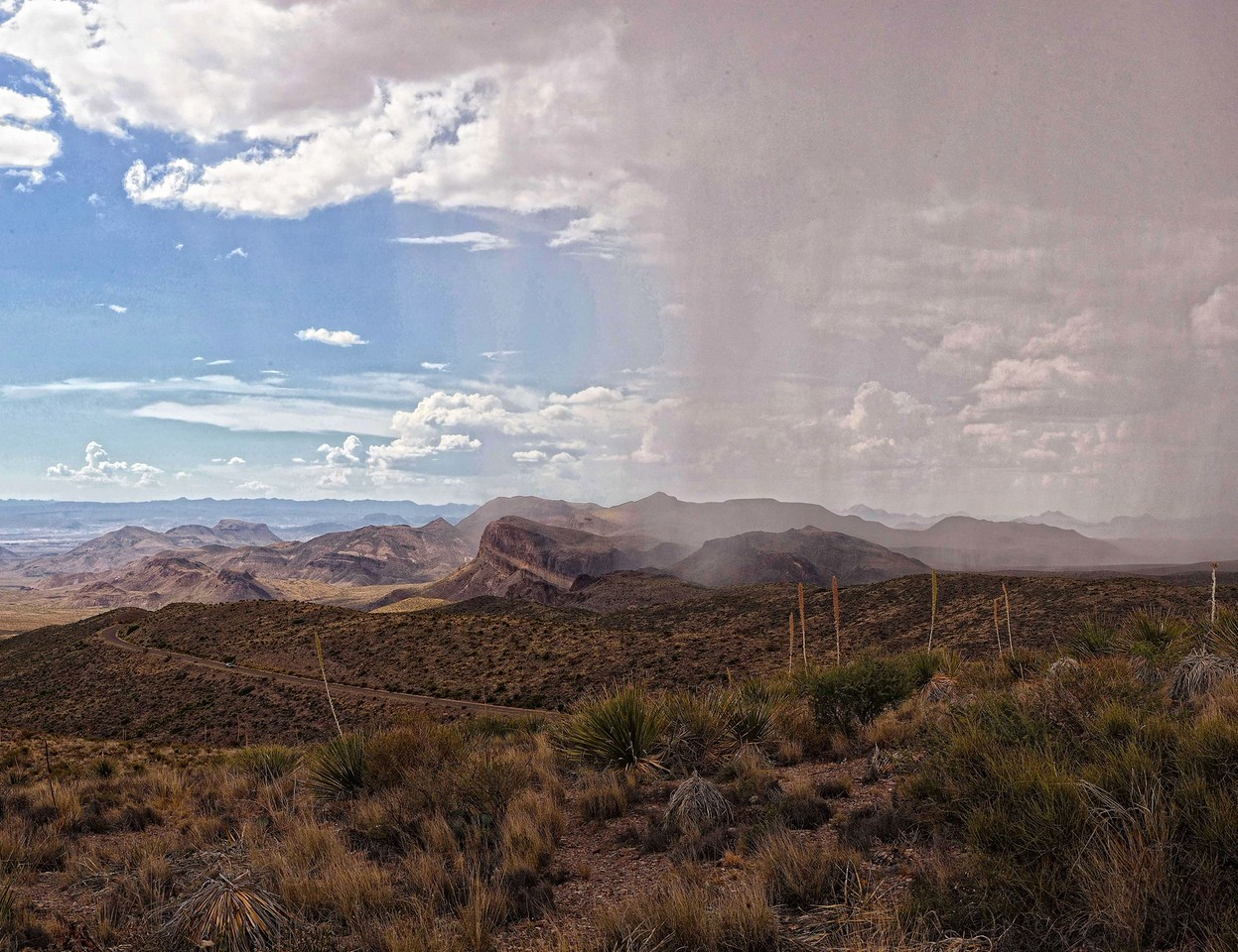 Sotol Vista Storm