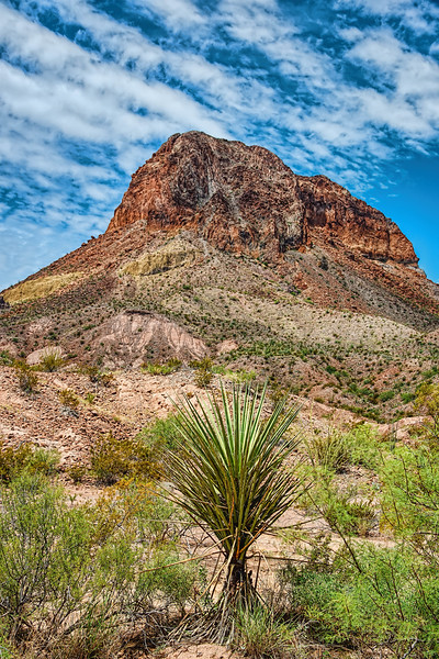 Cerro Castellan, Big Bend National Park