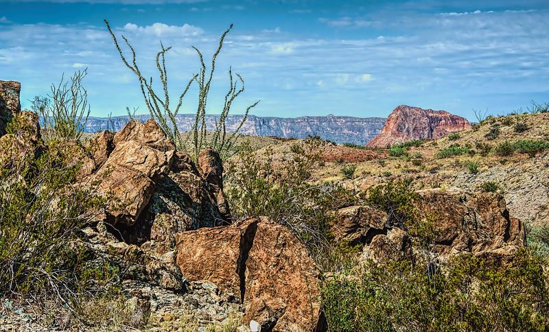 Big Bend desert scenic