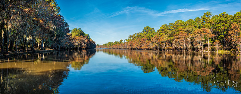 Caddo Lake State Park pano